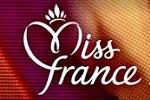 miss-france-2014-logo-150-100